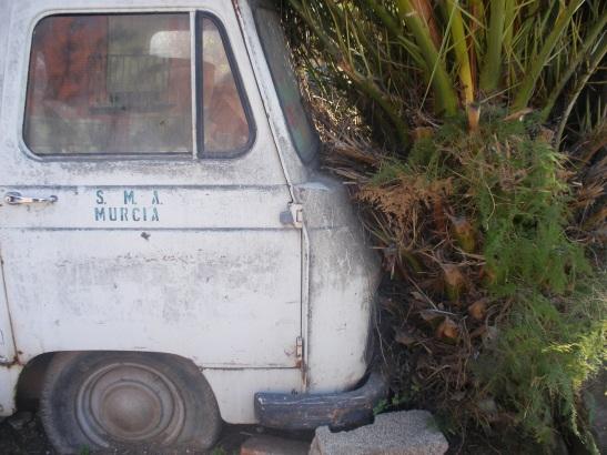 Furgoneta en la Huerta de Murcia